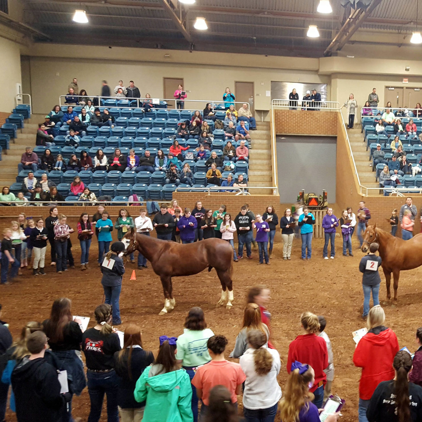 4-H students with their horses at a judging contest