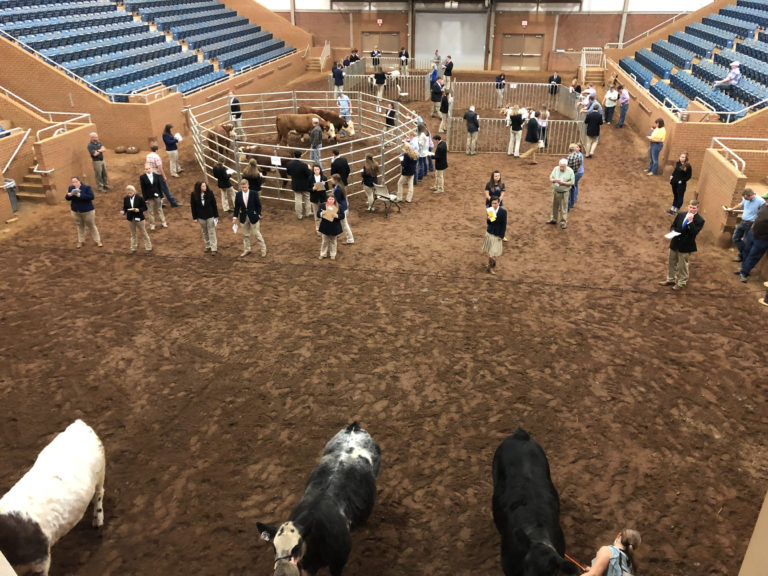 Students competing at round up