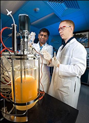 USDA Scientists looking at fermentation equipment