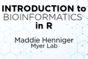 Image depicting bioinformatics in R logo, by Maddie Henniger in Myer Lab