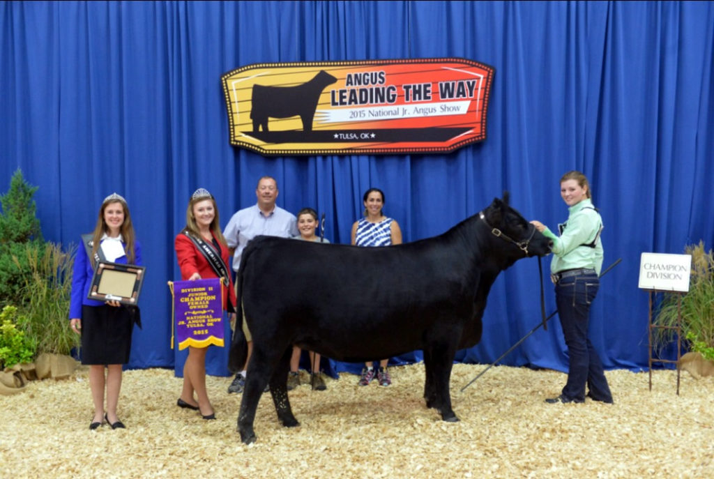 Mary and a livestock competition with her cow