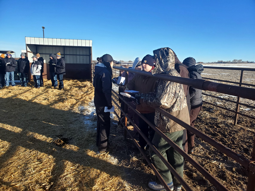 Abigayle on location with the Livestock Judging Team