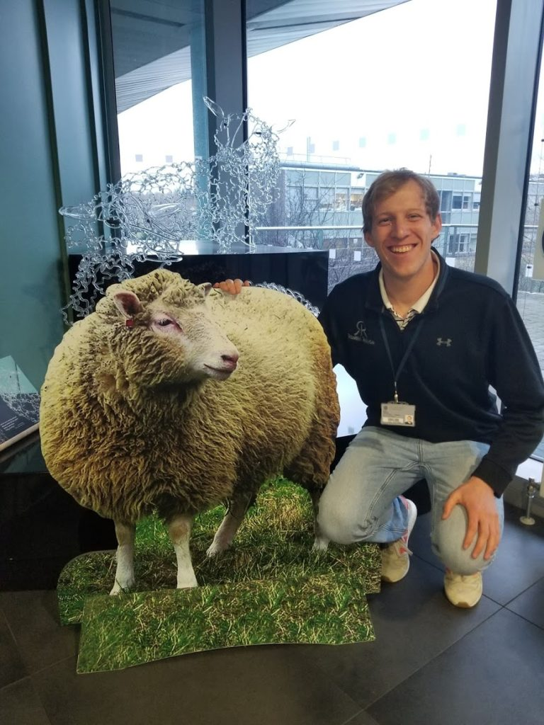 Troy posing with a sheep