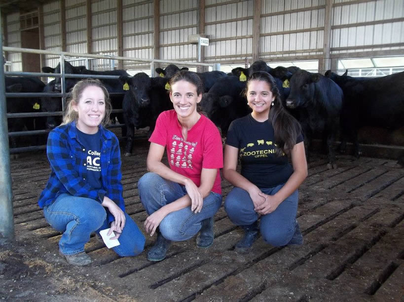 Sonia with two other girls in front a cows