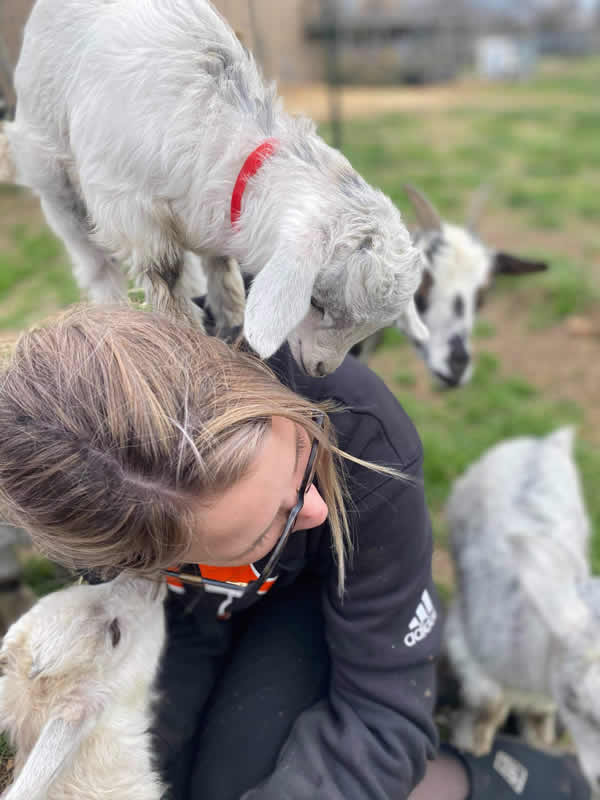 Courtnie with goats climbing on her