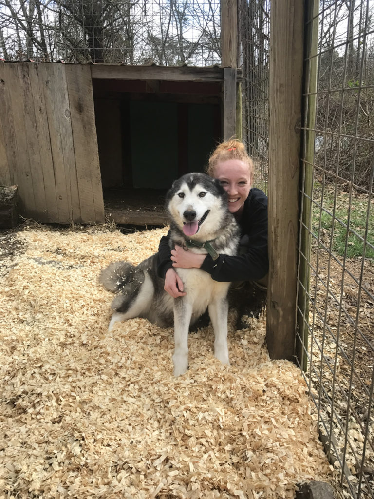 Caitlin with a husky